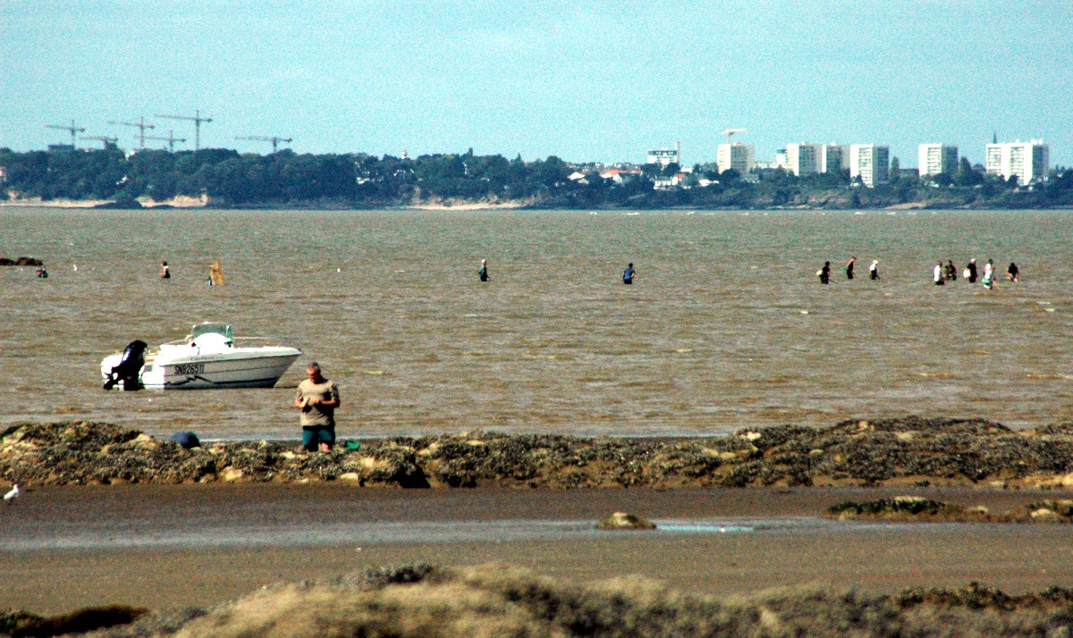 Balade à Tharon-Plage, un jour de Grande Marée