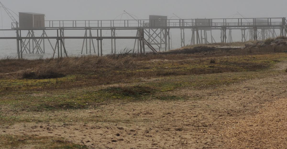 étranges cabanes dans le brouillard